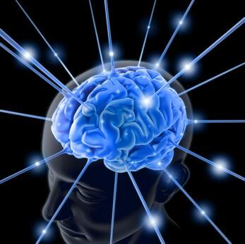 brain smart