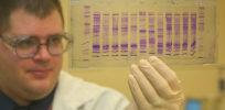 px CBP chemist reads a DNA profile