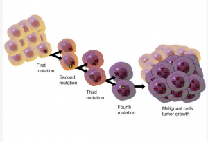 Mutations driving cancer growth