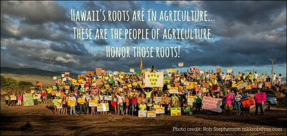 2014-10-27-hawaiiroots-thumb