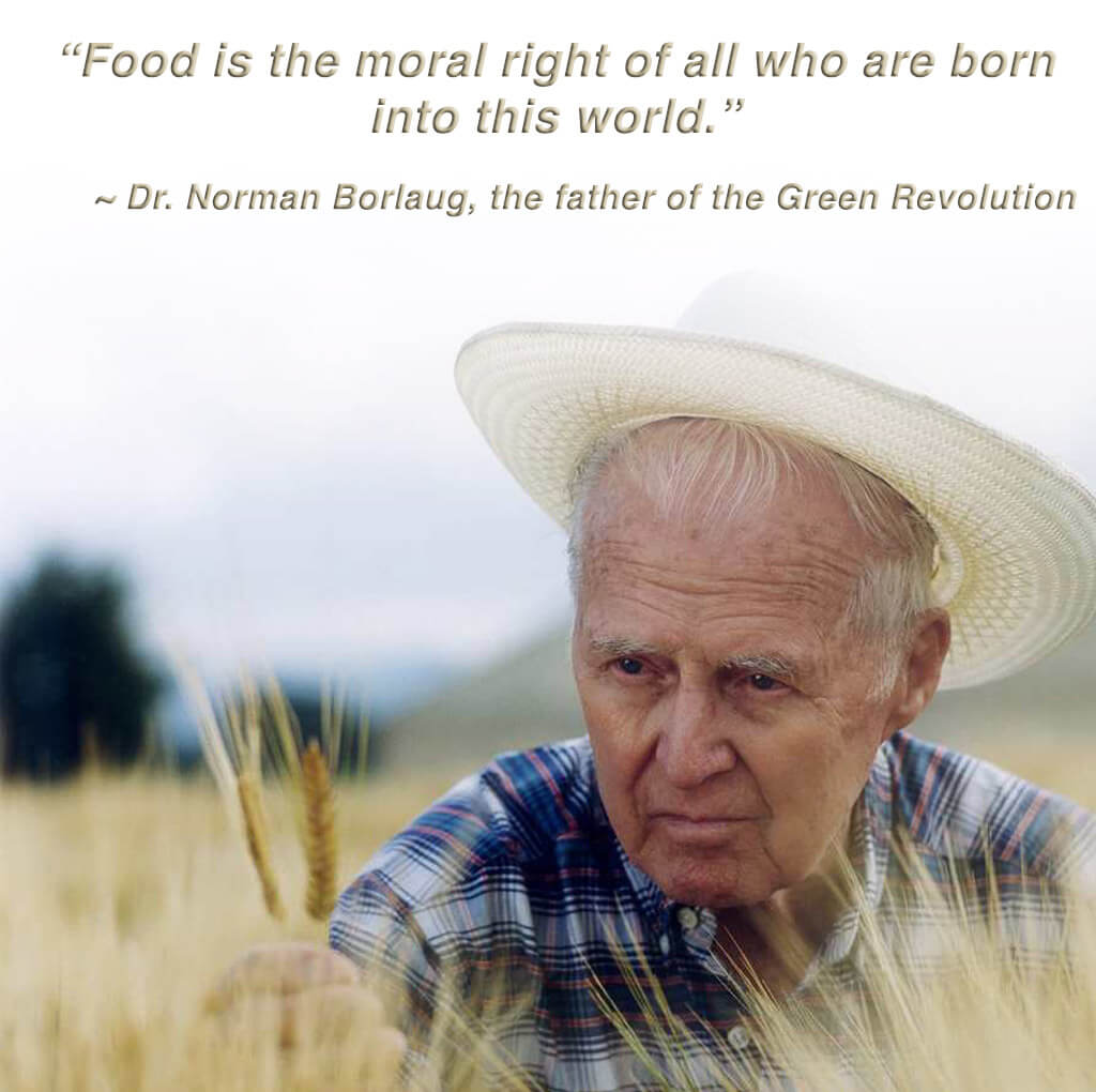Norman-Borlaug copy