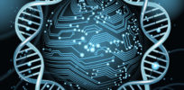 DNA engineered as 'hard drives' for information storage
