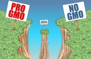 gmo signs x