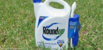 RoundUp Herbicide x