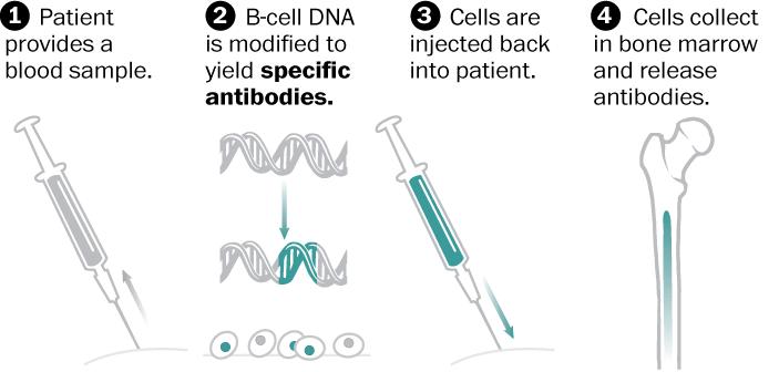 Reprogrammed cells