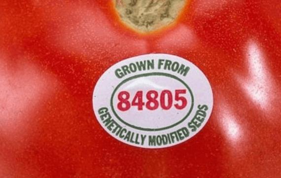 2015-04-01-1427907122-2388905-tomato-thumb