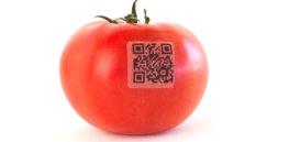 tomato iStock Small