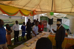 President Museveni observing drought tolerant corn bred through doubled haploidy