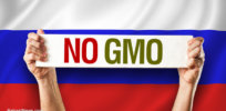 No GMO Flag Russia