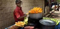 Roadside maize vendor in India