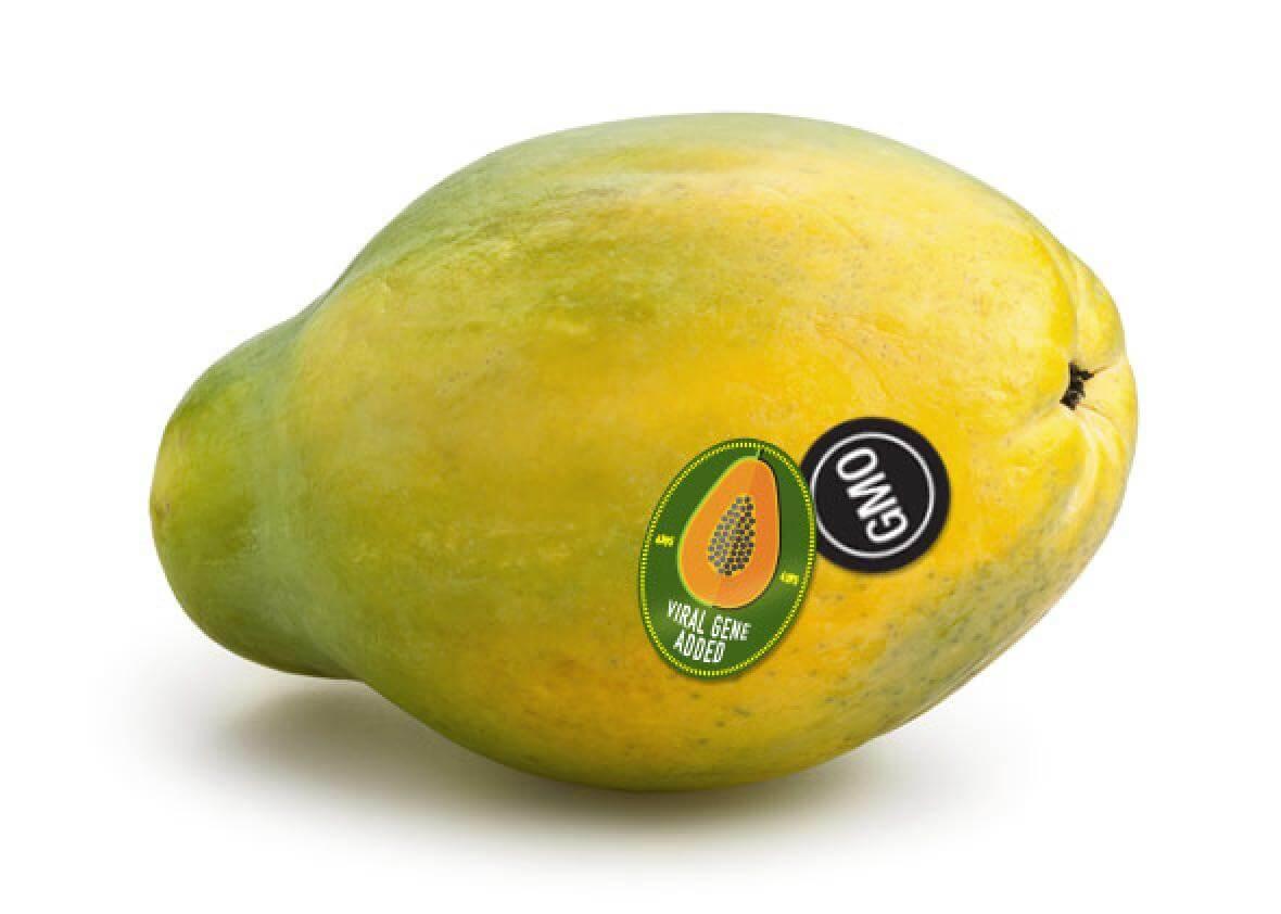 papayaStickers jpg CROP promo xlarge