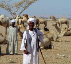 Are Sudanese Arabs?