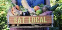 Organic Farming as Environment Friendly Routine