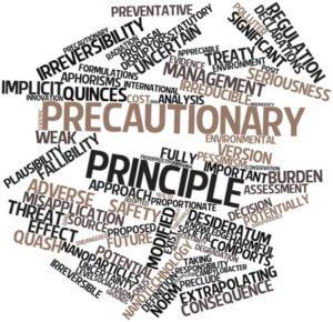 word cloud precautionary principle