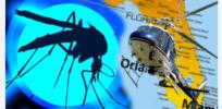 zika florida