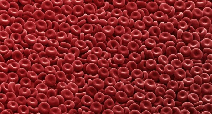blood 7 26 18 3.jpg
