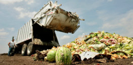 food waste opt