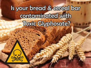 bread-cereal-bars-water-contaminated-with-toxic-glyphosate