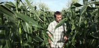 Agricultural economist: GMO crops have benefits, otherwise farmers wouldn't grow them