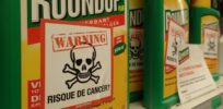 glyphosate cancerrisk e