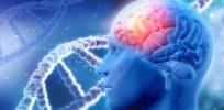 Parkinson genetics