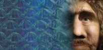 How Neanderthal DNA shaped the human genome