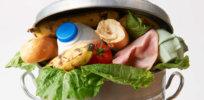 FoodWaste USDA