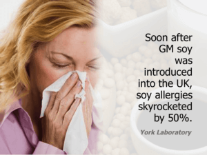GM Soy Allergies