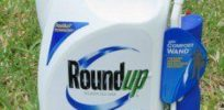RoundUp Herbicide x e