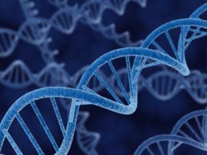 DNA Strand x