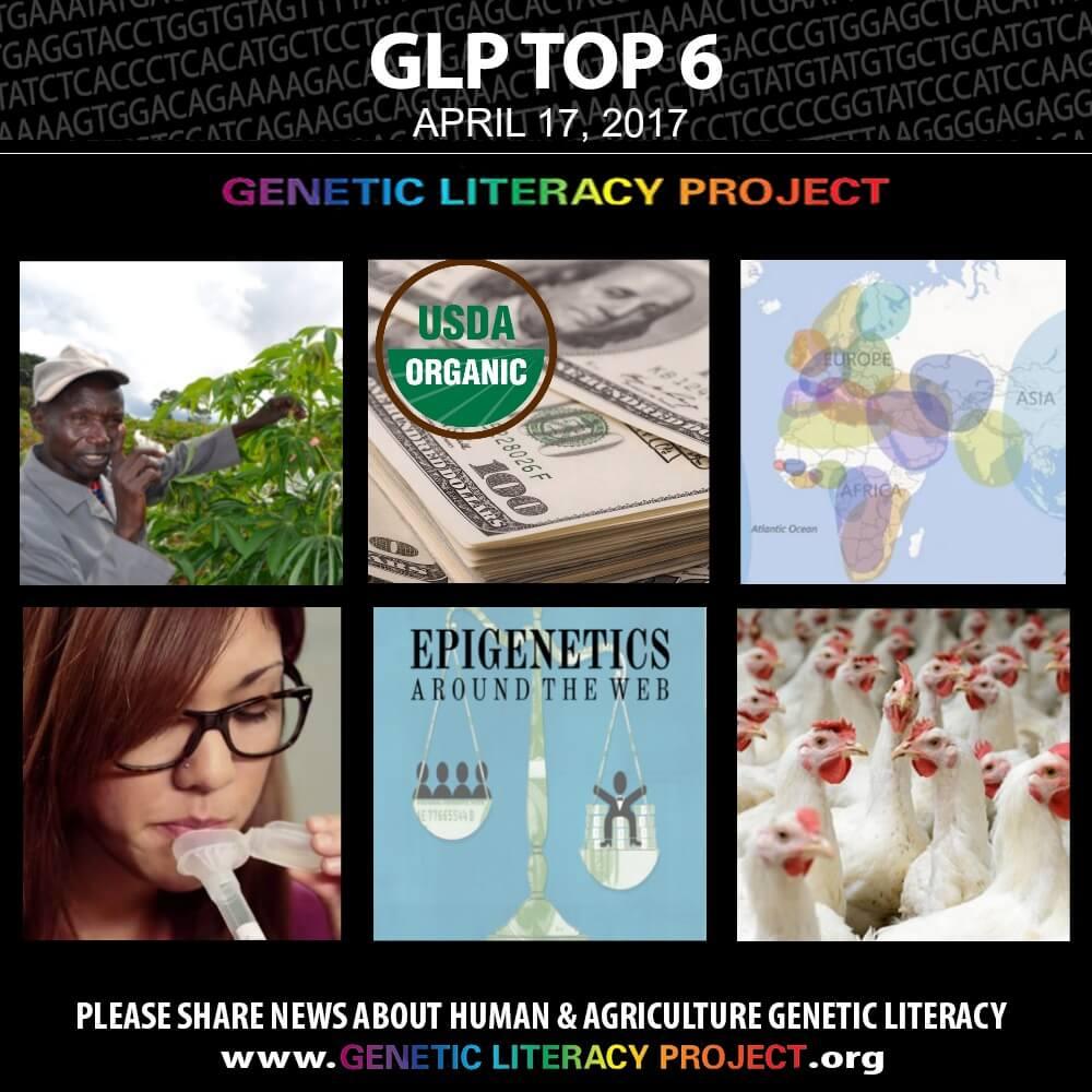 GLP Top Thumbnail April