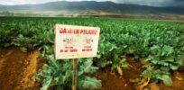 pesticide pgiam istockphoto