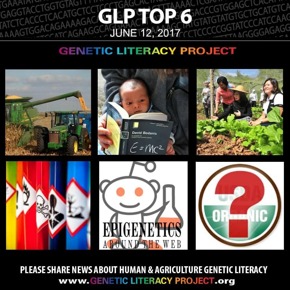 GLP Top Thumbnail June
