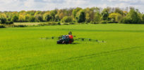 Glyphosate herbicide not an 'endocrine disruptor', European Food Safety Authority concludes