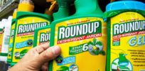 Will France's rejection of glyphosate reauthorization block Europe's proposed re-approval?