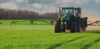 Did the National Cancer Institute withhold data showing no links between glyphosate and cancer?