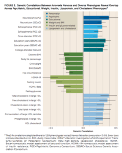 Anorexia Genetic Correlations