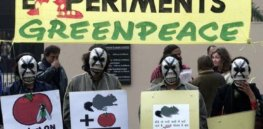 india spy agency says greenpeace endangers economic security