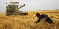 iran farmer