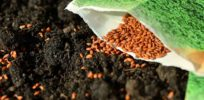 agriculture mergers seeds