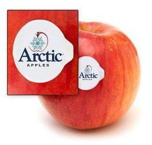 arctic x