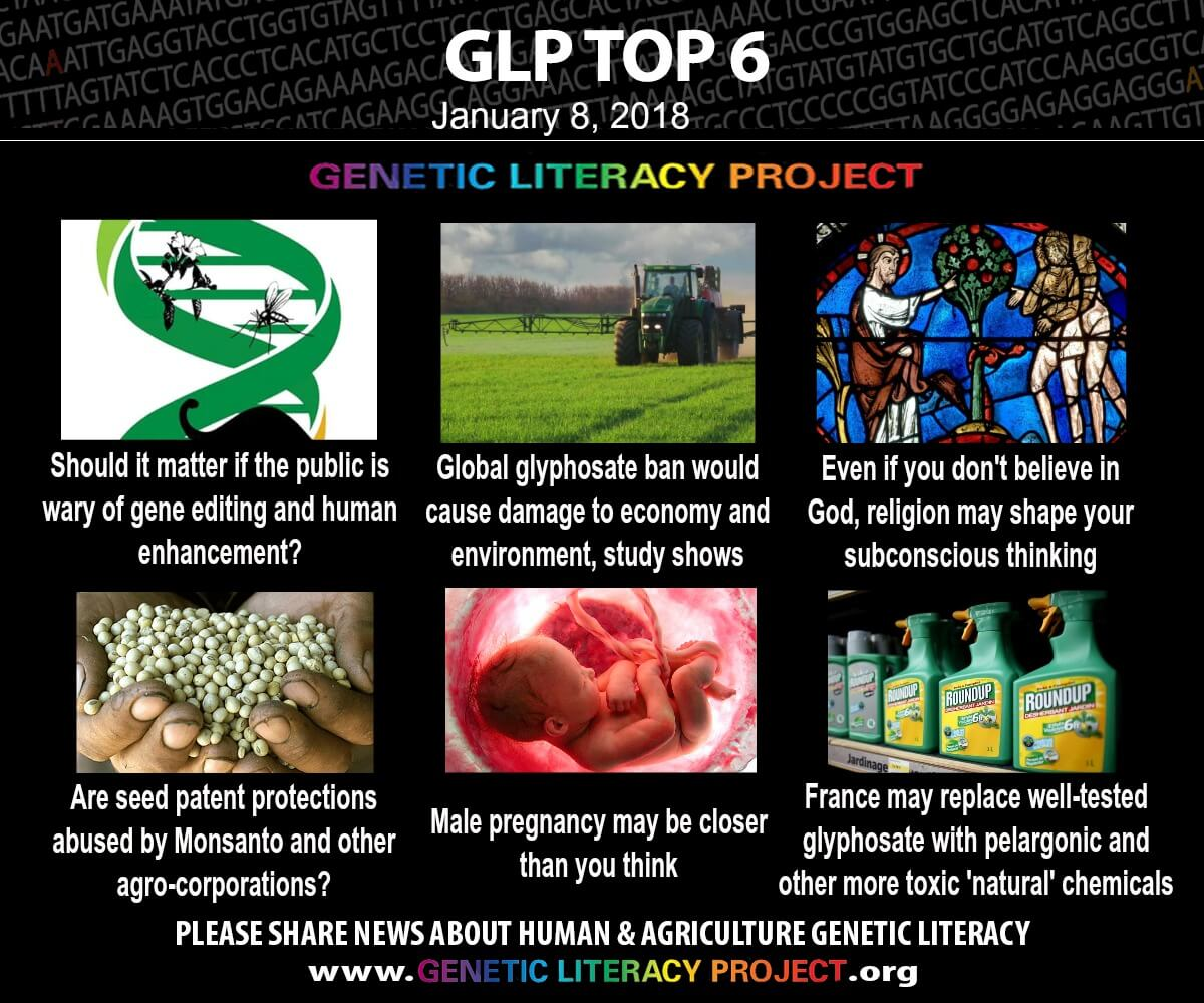GLP Top Jan