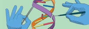 gene edit 1 19 18 3
