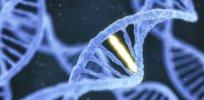 Gene Editing Rid World of Diseases x header