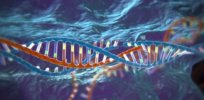 CRISPR vid