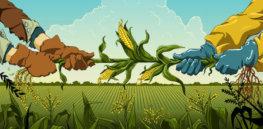 GMO WEB e
