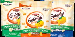 Goldfish MWOW Blog HeroImage x