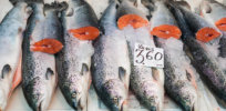 atlantic salmon market dispaly fresh display label contains no trademarks