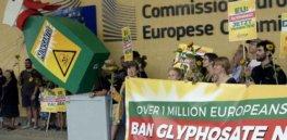 glyphosate crop