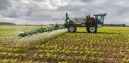 sugar beet spraying x